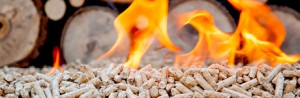 00281_intranet_banner_wood_pellets_460x150.jpg